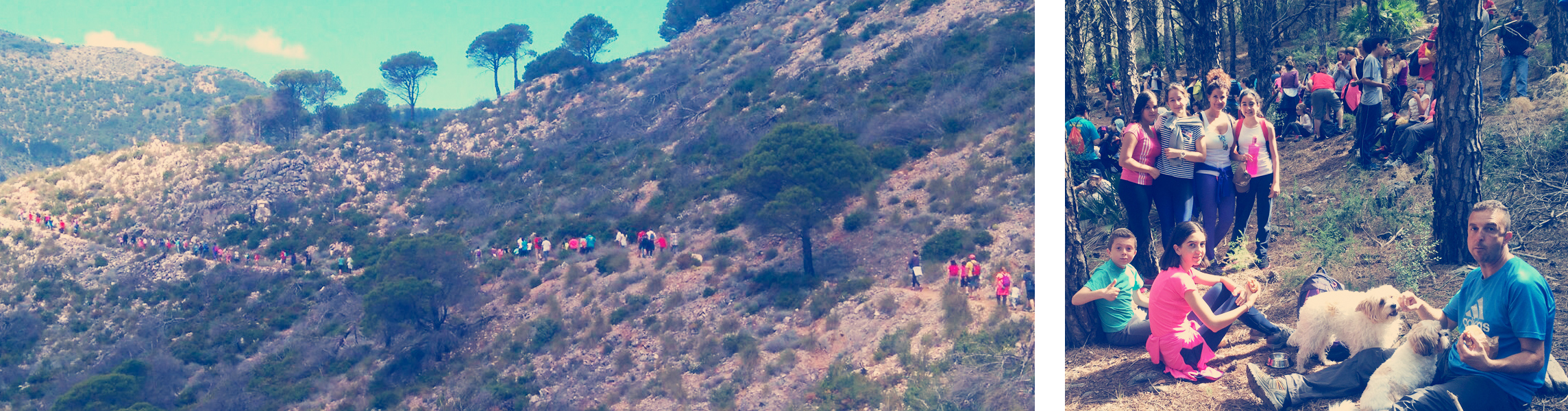 Una ruta por la Sierra de Mijas